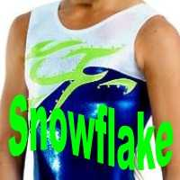 Snowflake Gymnastics Leotards at www.DiscountLeotards.com Alpha Factor GK